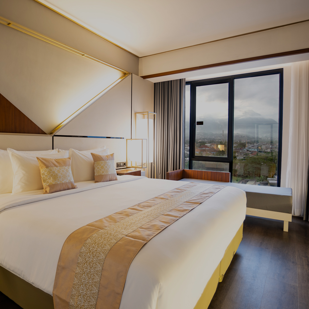 Deluxe Room Montain View